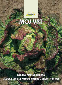 salata-zimska-rjavka